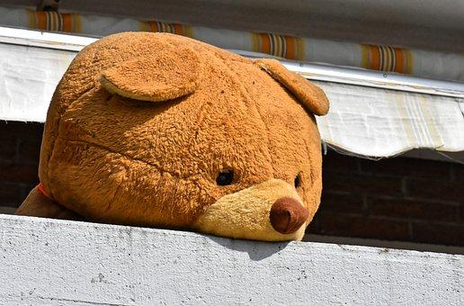 Giant Teddy, Teddy Bear, Balcony, Funny, Toys, Cuddly