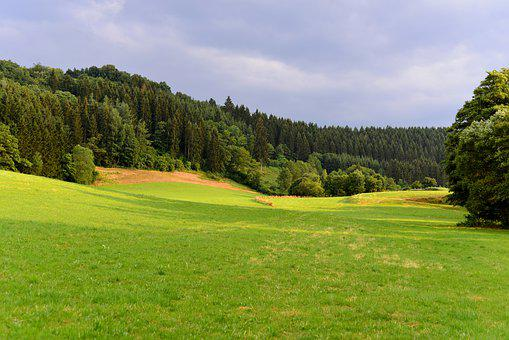 Landscape, Nature, Green, Scenic, Hills, Forests