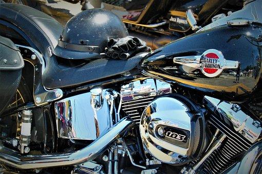 Harley, Davidson, Motorcycle