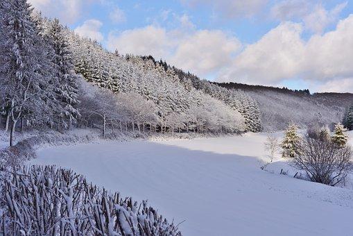 Snow Landscape, Winter Landscape, Snow, Cold, Winter
