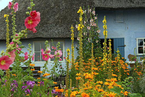 Farm, Thatched Roofs, Cottage Garden, Garden