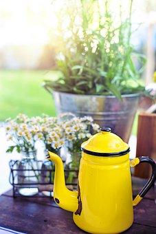 Coffee Pot, Tea Pot, Yellow, Flowers, Summer, Drink