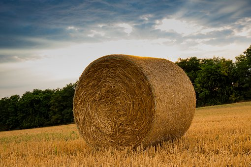 Straw, Agriculture, Harvest, Bale