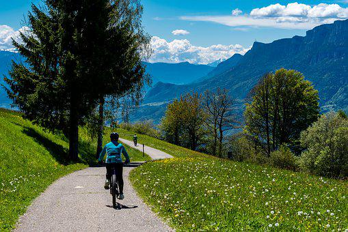 Bike, Mountain Bike, South Tyrol, Cycling, Sport