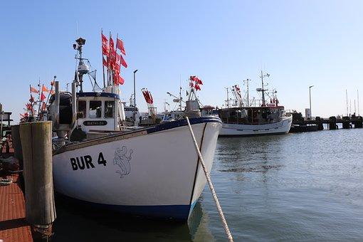 Ship, Fishing Boat, Sea, Water, Boat, Fishing, Port