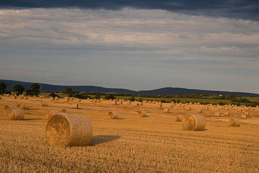 Land, Bale, Straw, Agriculture, Harvest, Rural, Economy
