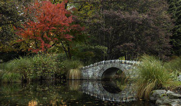 Queenstown, Garden, Autumn, New Zealand, Landscape