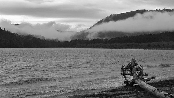 Canada, Port Renfrew, British Columbia, Monochrome