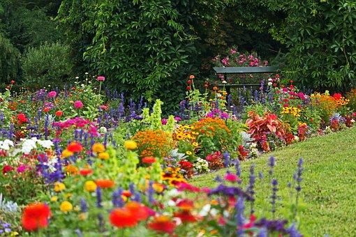 Park, Colorful Flower Beds, Orangery, Potsdam, Nature