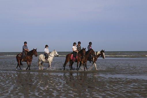 Riders, Horses, Ride, Sea, Horse