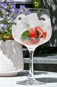 Gin, Cocktail, Bar, Alcohol, Lemon, Glass, Vodka