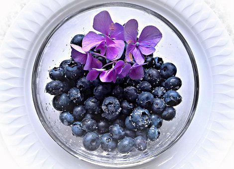 Blueberries, Fruits, Fruit, Big Blue Berries, Fresh