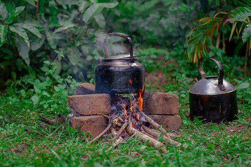 Cooking, Fire, Fire Wood, Cook, Hot, Flame, Campfire
