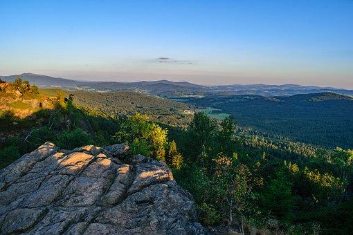 Bavarian Forest, Nature, Forest, Landscape, Trees