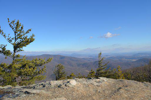 Tree, Mountain, Shenandoah, Landscape, Nature
