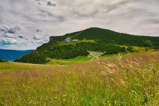 Landscape, Rax, Nature, Hiking