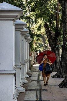 Umbrella, Woman, People, Female, Alone, Human, Outdoor