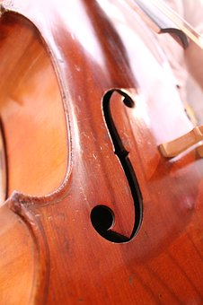 Cello, Wood, Brown, Musical Instrument, Music