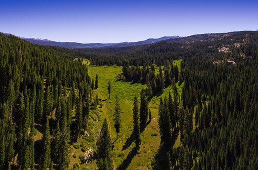Mountains, Sierra, Landscape, Forest, Nature