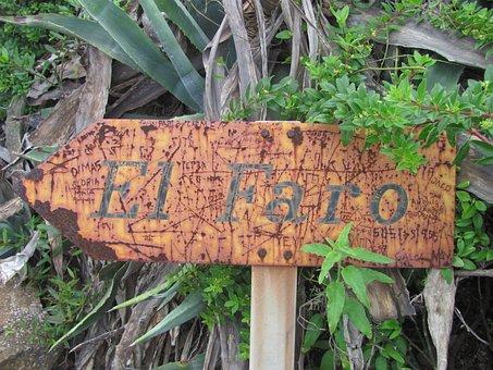 Directory, Tenerife, Lighthouse, Path, Hiking, Nature