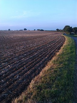 Ploughed Field, Norfolk, Blue Sky, Tilled, Field