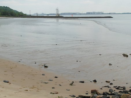 Elbe, River, Nature Conservation, Mouth, Watts