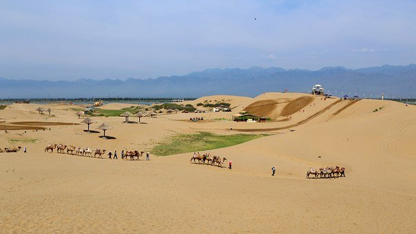 Sand Sea, The Scenery, Sha, Caravan, Desert