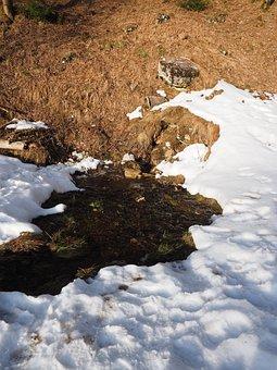 Seepage Site, Water, Pond Brook, Waters, Swallow Hole