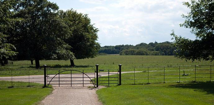 Wrought Iron, Field Gate, Cast Iron, Meadow, Trees