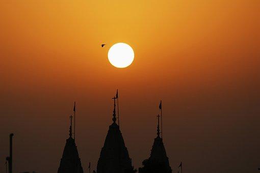 Sunrise, Bird Flying, Nature, Birds, Freedom, Sky