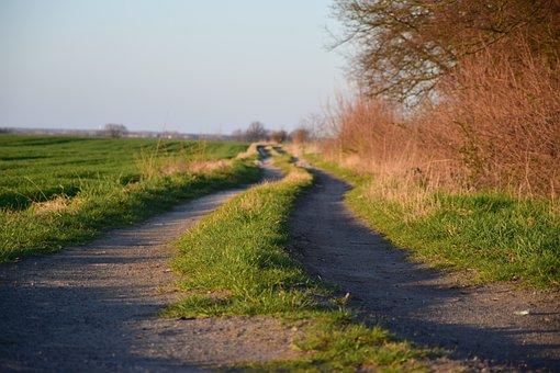 Way, Grass, Landscape, Village, Nature, Fields, Green