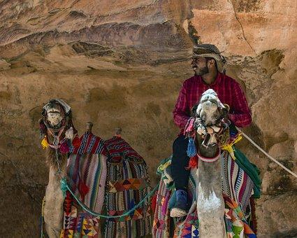 Camels, Camelliers, Al Siq Canyon, Heat, Summer