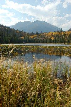 Mountain Lake, Lake, Mountain, Mountains Alpine