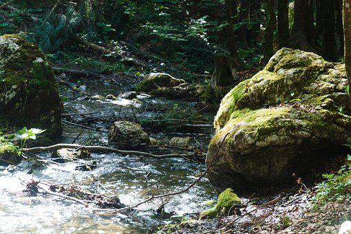 Water, Rock, River, Nature, Stones, Stone, Summer