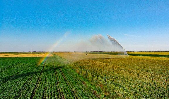 Campaign, Veneto, Sprinkler, Rainbow, Wheat, Water