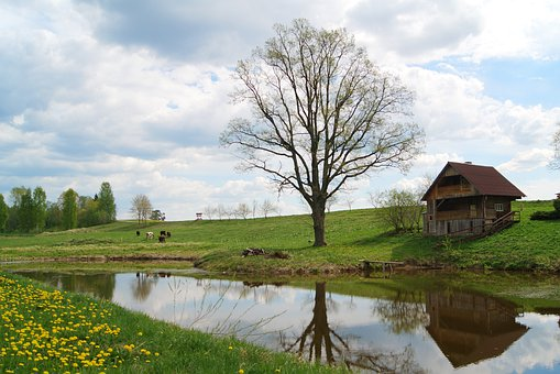 Country House, Village, Nature, Landscape, Agriculture