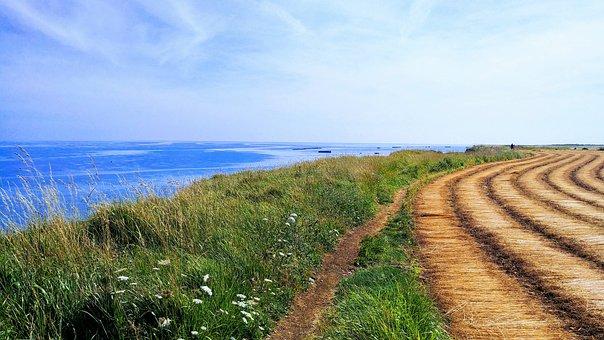 Lin, Normandy, France, Harvest, Plants, Sky, Cloud