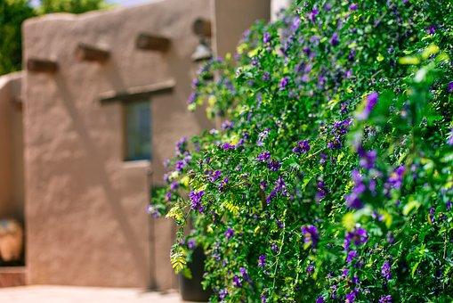 Arizona, Adobe, Desert, Architecture, Exterior, Pueblo