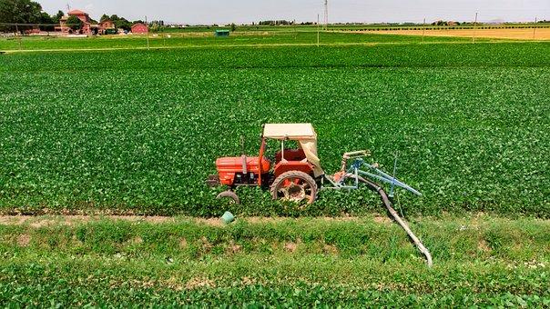 Tractor, Campaign, Irrigation, Orange, Veneto, Italy