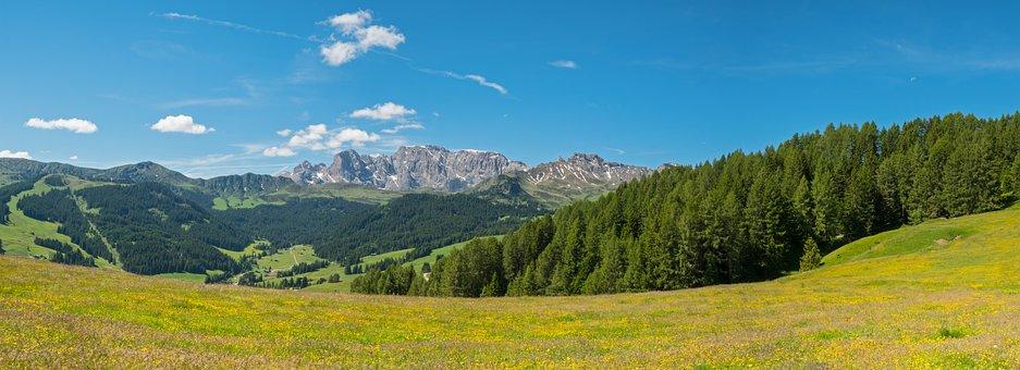 Mountain Landscape, Mountain Meadow, Landscape
