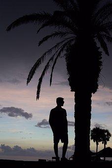Silhouette, Palm Tree, Teenage, Ocean, Colorful Clouds