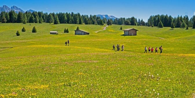 Hike, Trail, Hiking, Landscape, Path, Away, Human