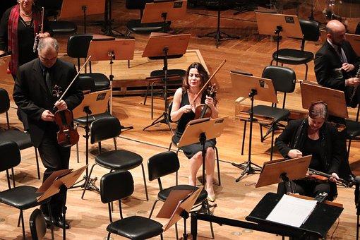Violinist, São Paulo, Theatre, Music, Entertainment