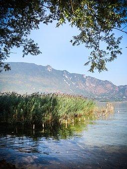 France, Aix Les Bains, Lake, Water, Green, Reflections