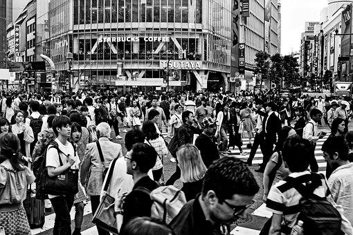 Japan, Tokyo, Shibuya, City, Travel, Human