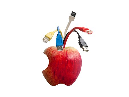 Network Cables, Network Connector, Apple, Cable, Patch