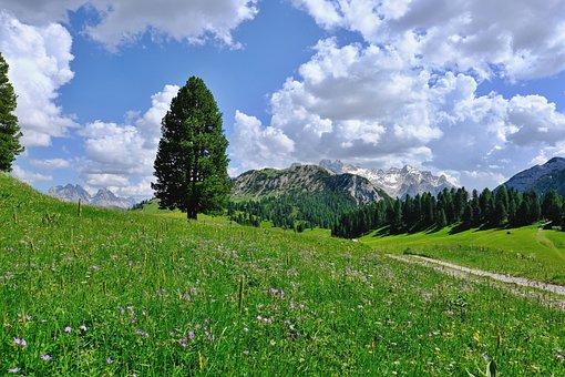 Nature, Landscape, Mountains, Mountain World, Alm