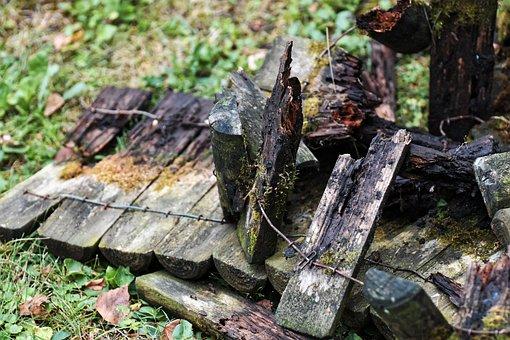 Wood, Broken, Fence, Palisade, Bed Border, Moss