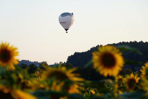 Balloon, Hot Air Balloon, Flying, Freedom, Ballooning