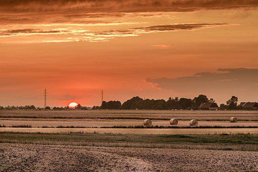 Red Sunset, Fields, Harvest, Corn, Summer, Evening